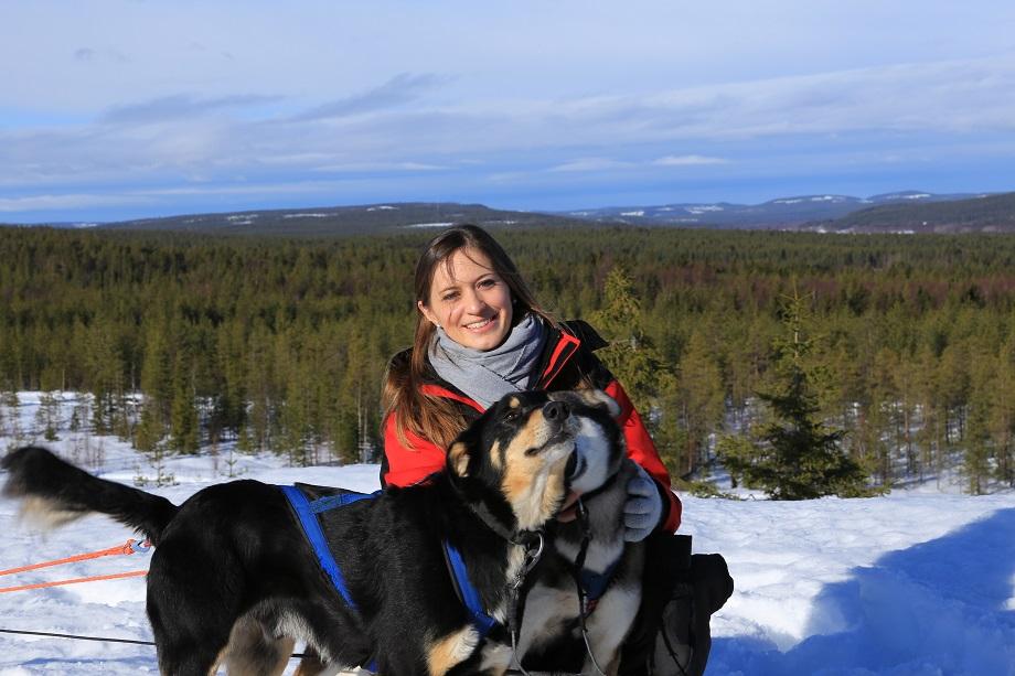 Finnország_Lappföld_kutyaszán_túra_Rovaniemi_csoportos_utazás