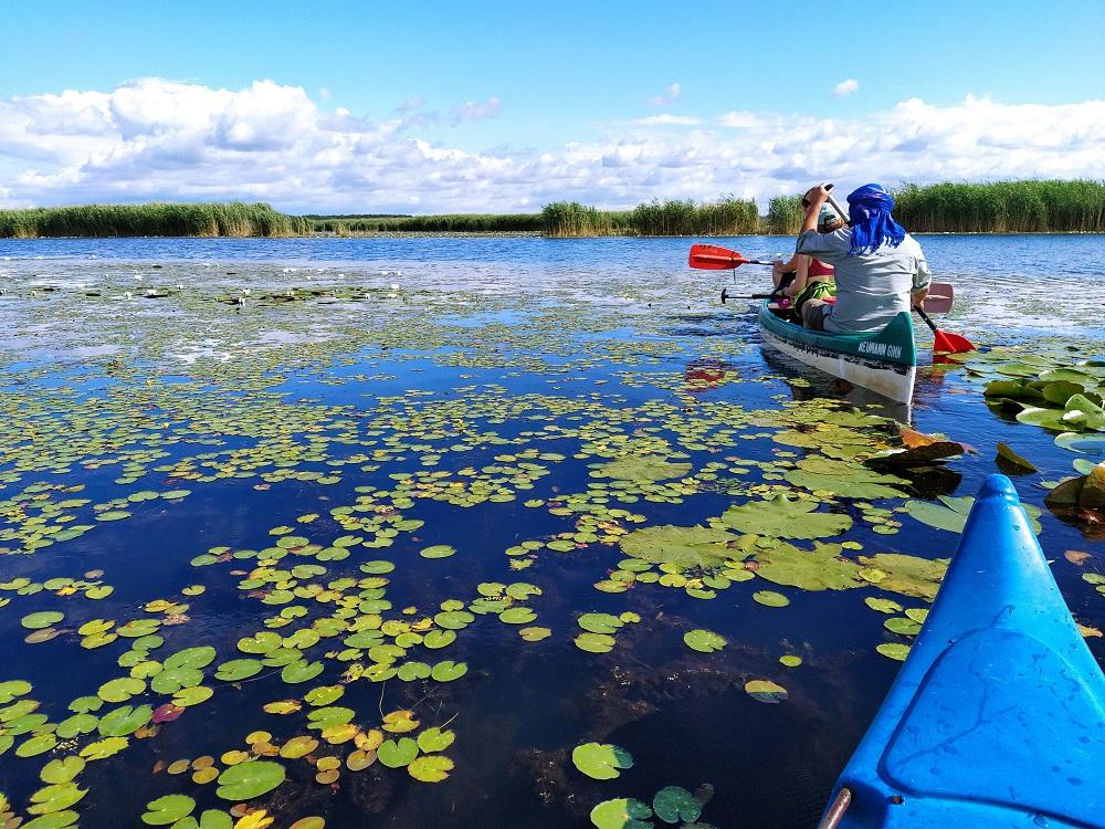 Kétnapos kenutúra Tisza-tó