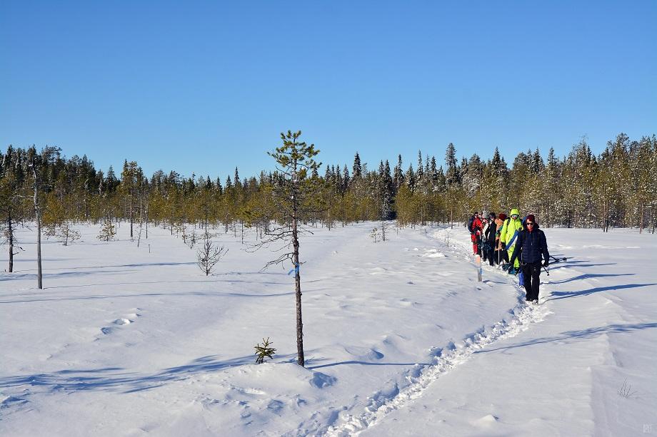 hótalpas_túra_Finnország_Rovaniemi_Lappföld_2