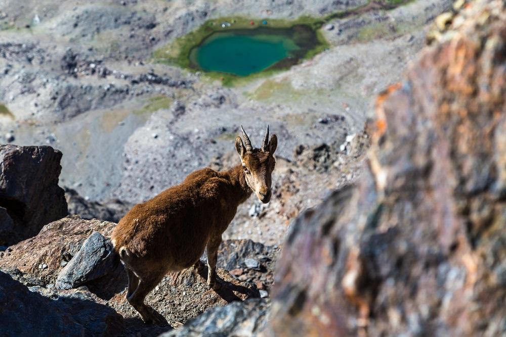 Pico Veleta csúcstúra Sierra Nevada hegységben Andalúziában csoportos kalandutazás