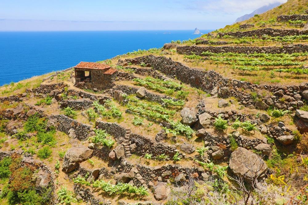 Tenerife Anaga túra